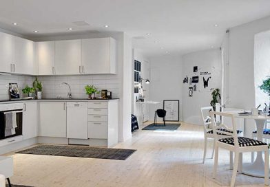 studios tipis bina skandinaviur stilshi